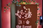 그 숲(The Forest) 소개 / 심상도 박사 스토리텔링