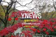 YNEWS 양산스마트뉴스 2019.12.13 (금요일) 주요뉴스